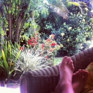 Barbados Garden