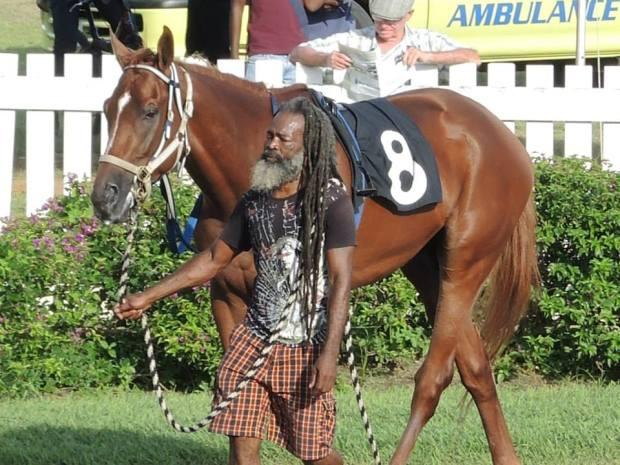 Barbados Race Horse
