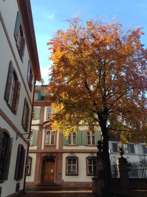 Basel Home