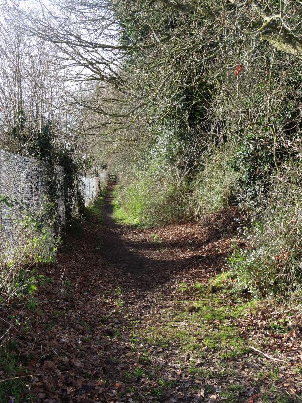 Walk Buckinghamshire