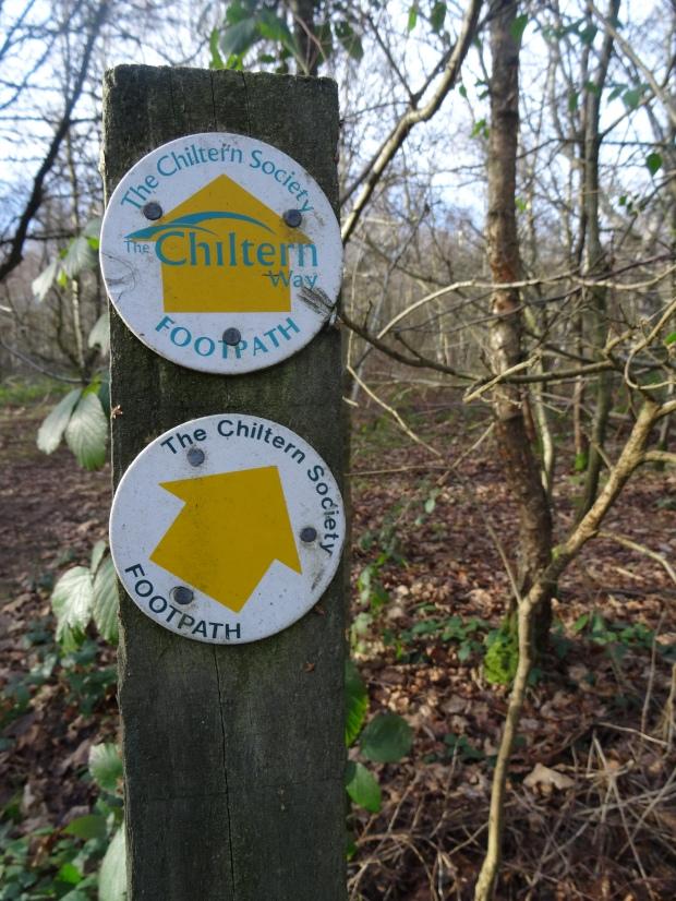 Chiltern Walk