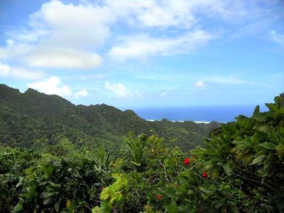Cook Islands Mountain