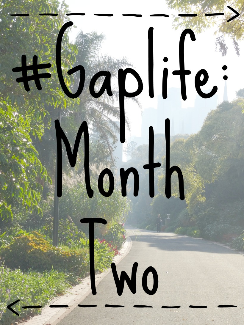 Gaplife Month Two 1