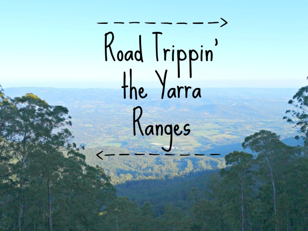 Yarra Ranges 15