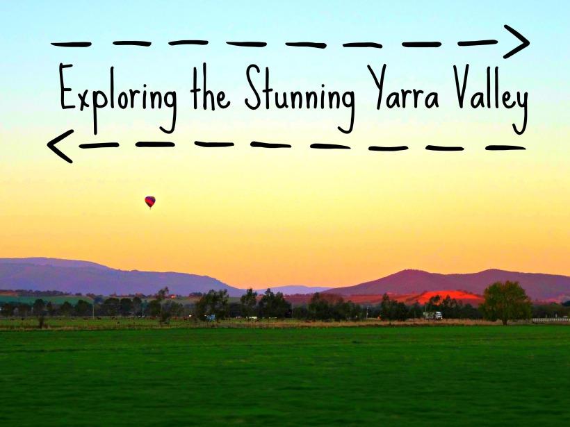 Yarra Valley 11