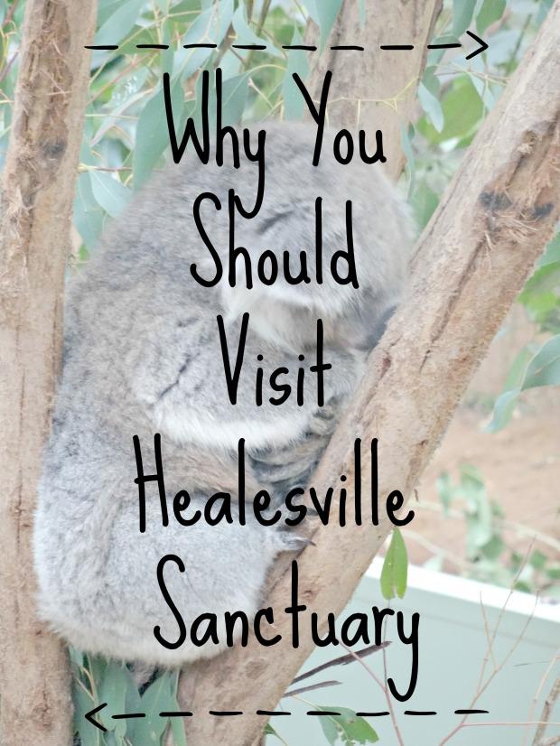 Healesville Sanctuary 17