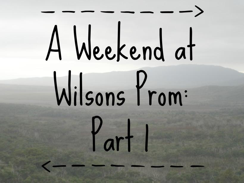 Wilsons Prom 23